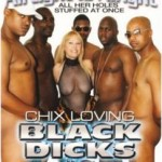 Chix Loving Black Dicks #2