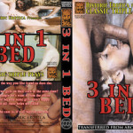 3 In 1 Bed (1970's) – USA Classics