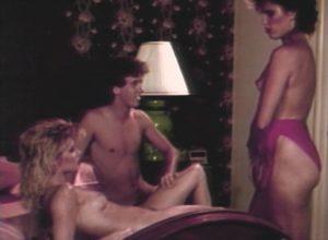 Dorothy Onan, Ginger Lynn – Voyeur's Delight (1986) [Watch Online]