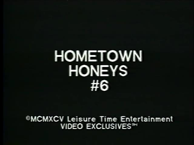 Hometown Honeys 6 (1995) [HQ] [Download]