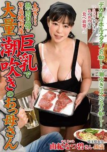 Japanese Mature Serves as Maid: ISD-113 JAV