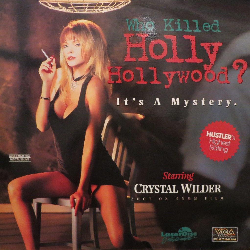 Who Killed Holly Hollywood (1994) (USA) [Watch & Download]